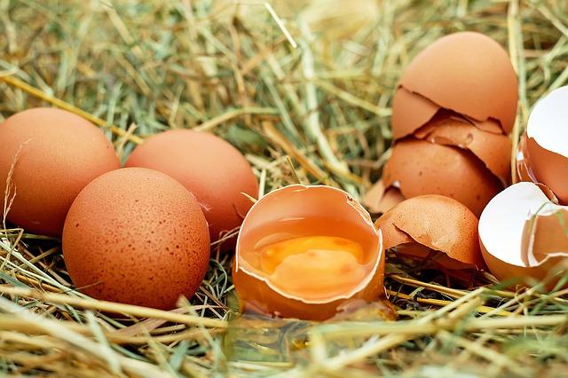ביצים הן מזון על מצוין