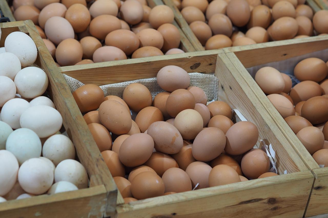 ביצים וכולסטרול מחומצן