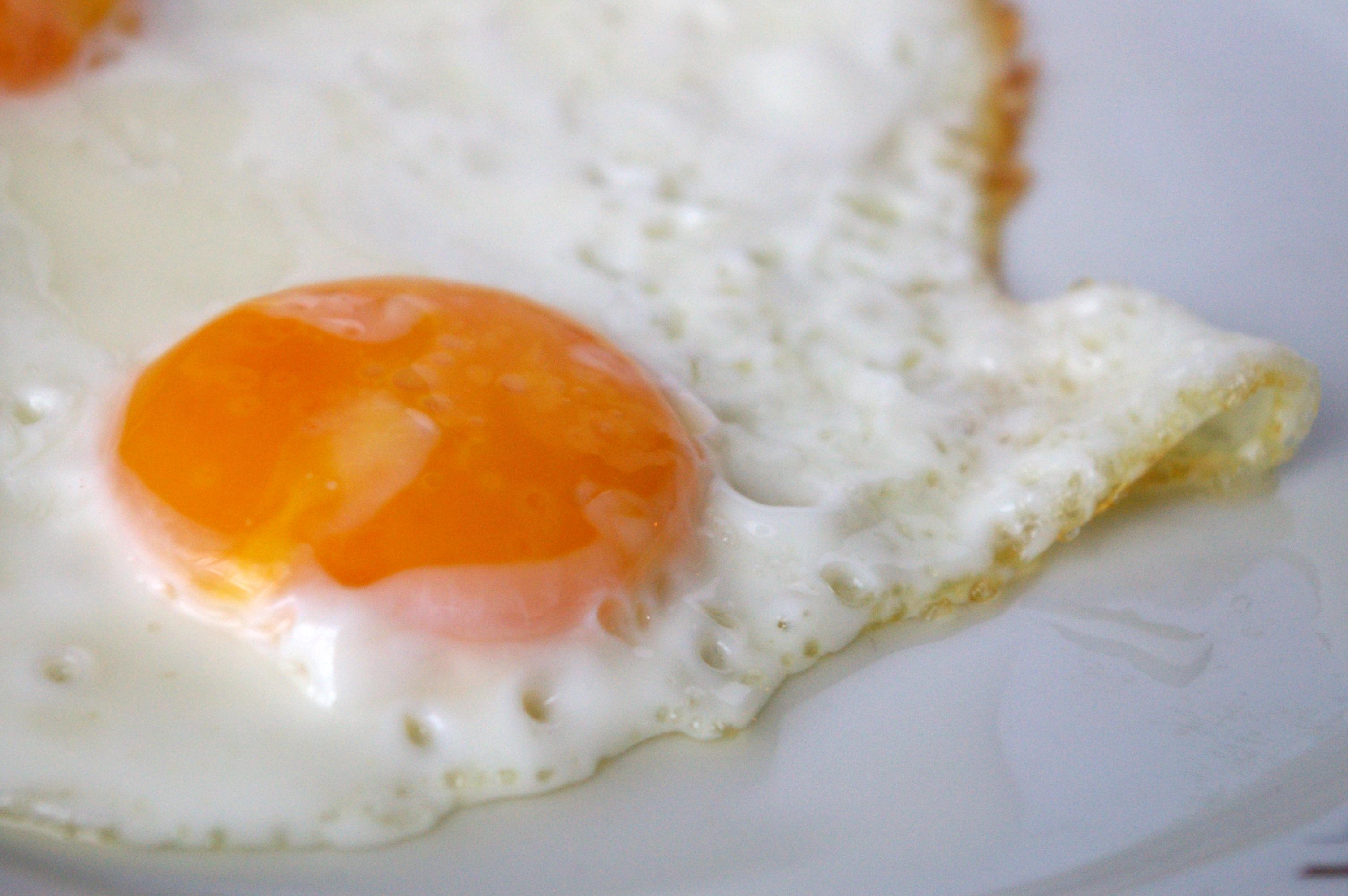 ביצת עין
