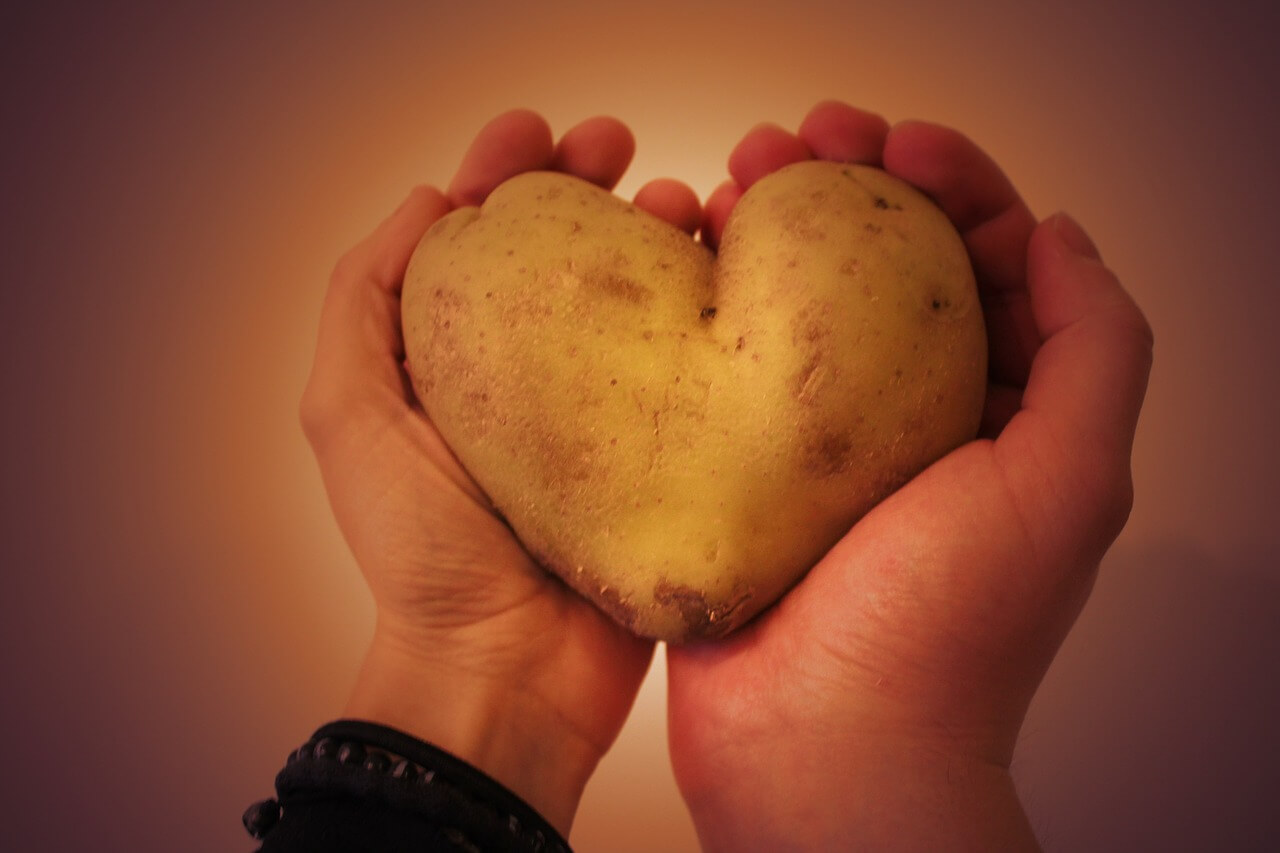 תפוח אדמה - מקור טוב לעמילן עמיד