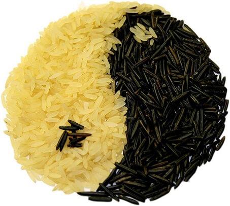 גרגירי אורז