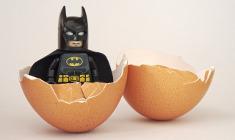גיבור בתוך ביצה